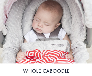 Whole Caboodle